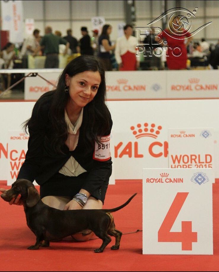 CLUB SHOW WDS 2015 MILANO 1OPEN CL