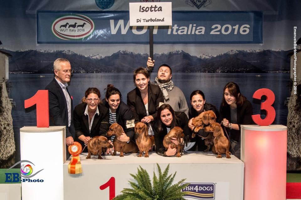WUT 2016 MILANO ISOTTA DI TURBOLAND  BEST IN SHOW PRODUCER