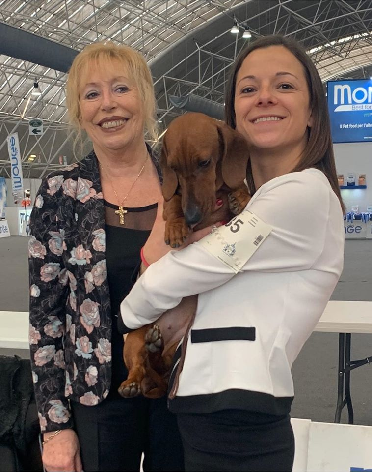 NDS SEGRATE 18/01/2020 CAC & BEST OF BREED